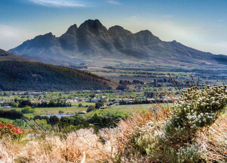 View of Franschhoek