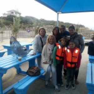 Whale route tour walker bay