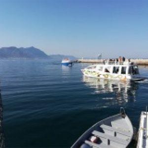Cape peninsula tour boat