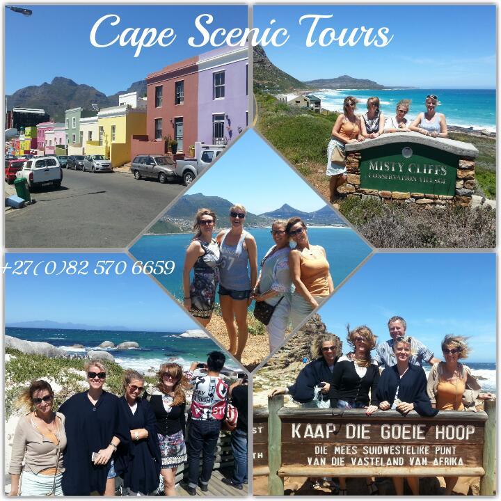 17 Nov 2015 Cape of Good Hope Tour