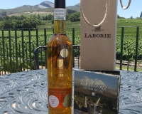 Visiting Laborie Wine Estate in Paarl