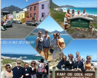 17 Nov 2015 Cape of Good Hope Tour